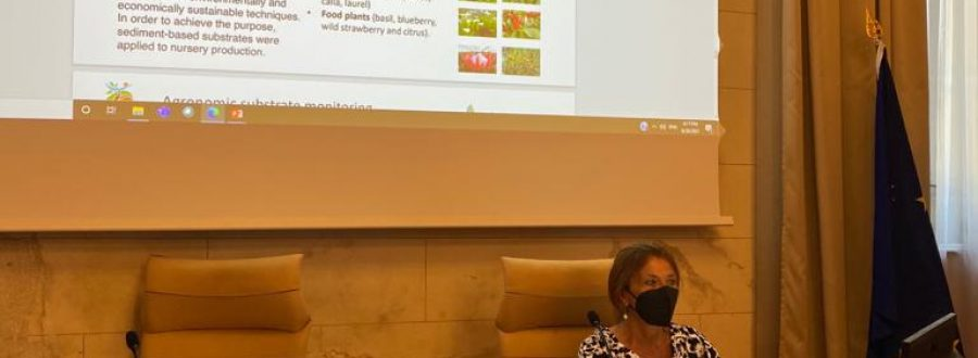 LIFE SUBSED took part in the SWAP Seasonal School of the Scuola Superiore Sant'Anna – 30 June 2021